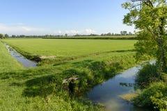 Abzugsgräben und Felder von Adda parken nahe Abbadia Cerreto Stockfoto