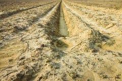 Abzugsgraben der Regenwassersammlung Stockfotos