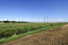 Abzugsgraben durch die Bauernhoffelder Lizenzfreie Stockbilder