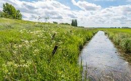 Abzugsgraben in einer ländlichen Landschaft Lizenzfreie Stockfotografie