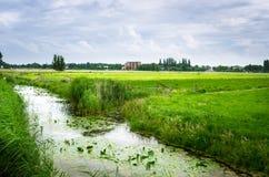 Abzugsgraben entlang einem Feld in der Landschaft der Niederlande Stockfotografie