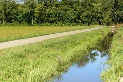 Abzugsgraben und Straße im grünen Land gestalten nahe Besate, Italien landschaftlich Lizenzfreie Stockfotos