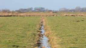 Abzugsgraben und Wiesen im waterland Friesland, selektiver Fokus Lizenzfreies Stockbild