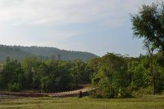 Abzugskanal, grüne Bäume, Himmel und Wolken in Indien Stockfotografie