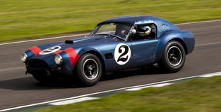 AC Cobra. Royalty Free Stock Photography