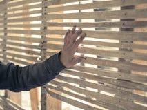 Acacia della mano e parete commoventi dello sgorbio Fotografia Stock Libera da Diritti