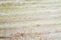 acacia faux - fond de texture en bois de pseudoacacia de robinia dans la macro pousse de lentille photographie stock
