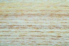 acacia faux - fond de texture en bois de pseudoacacia de robinia dans la macro pousse de lentille image libre de droits