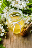 Acacia flowers and honey in the jar Royalty Free Stock Image