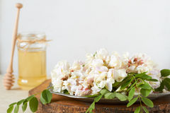 Acacia flowers and honey Stock Photo