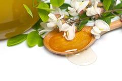 Acacia honey Stock Photography