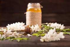 Acacia honey and flowering acacia Stock Image