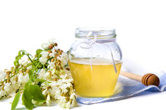 Acacia honey and flowers isolated Stock Photos