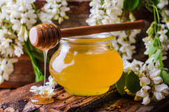 Acacia honey in gar on wooden background. Spring mood. Selective focus. Toned image. Sweet honey in jars and acacia flowers  on white Stock Photography