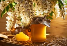 Acacia honey jars on wooden cutting board. Acacia honey jars standing on wooden cutting board, acacia branches with flowers drooping down, copy space, backlit royalty free stock images