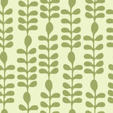 Acacia Leaves Seamless Pattern Royalty Free Stock Images