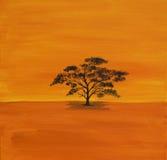 Acacian de acrílico en África Imagen de archivo libre de regalías