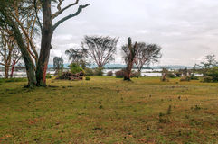 Acacias of kenya. Acacias with lake on the African Savannah of Kenya on a cloudy day royalty free stock photos