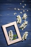 Acaciatwijgen met een houten kader op een blauwe houten achtergrond royalty-vrije stock afbeelding