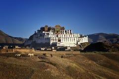 Académie de bouddhisme du Thibet photos libres de droits