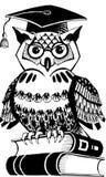 Acadêmico da coruja - coruja simbolic dos desenhos animados que senta-se em livros Imagem de Stock Royalty Free