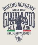 Academia del boxeo del gimnasio de Milán Foto de archivo
