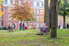 Academic arbeitet in Harvard-Yard Stockfotografie