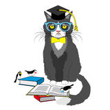 Academic cat reading books. Vector illustration isolated on white Stock Images