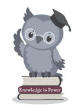 Academic cute owl. Illustration of a cute owl sitting on books Royalty Free Stock Photos