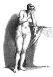 Academic drawing. Nude figure of a young woman Royalty Free Stock Image