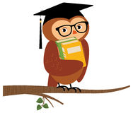 Academic owl holding a book sitting on a branch Stock Photography