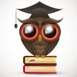 Academic Owl vector. Owl school a wise teacher knowledge book Stock Photos