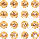 Academic study subject icons. A subject category icon set eg. science, maths, language, literature, history, geography, musical, physical education etc Royalty Free Stock Photography