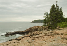 Acadia 1 Royalty Free Stock Photo