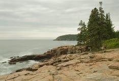 Acadia 1 Royalty-vrije Stock Foto