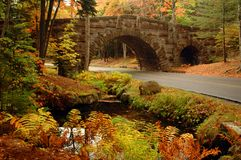 Acadia Arched Stone Bridge. One of the many arched stone bridges of Acadia National Park and fall colors Royalty Free Stock Images