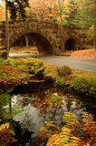 Acadia Arched Stone Bridge. One of the many arched stone bridges of Acadia National Park and fall colors Royalty Free Stock Image