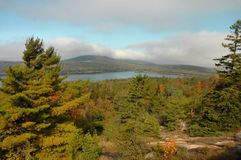 Acadia In Autumn Stock Photo