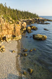 Acadia Clifftop Wald und Rocky Beach Lizenzfreies Stockbild