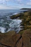 Acadia-Küste Lizenzfreie Stockfotos