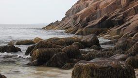 Acadia National Park coastline stock video