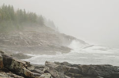 Acadia National Park foggy rocky coast Stock Images