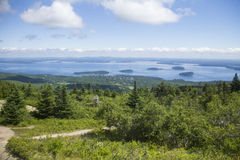 Acadia National Park, Maine. Forest in Acadia National Park with bay in background in Mount Desert Island, Maine Stock Images