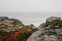 Acadia National Park rocky coast in Autumn Stock Images