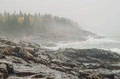 Acadia National Park rocky coast Stock Image