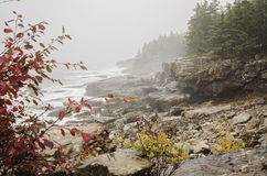 Acadia National Park rocky coast Stock Photo