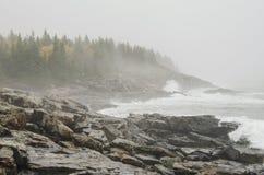 Acadia National Park rocky coast Royalty Free Stock Photo