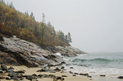 Acadia National Park Sand beach Stock Photography
