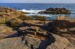 Acadia National Park (Thunder Hole) royalty free stock photos