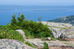 Acadia National Park. View from atop a high point in Acadia National Park, Maine, USA. The granite bedrock, exposed and eroded by glaciers, is plainly visible royalty free stock image